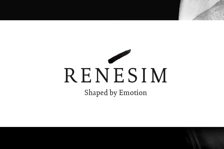 René Sim Corporate Design Layout